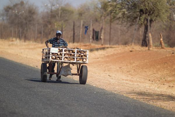 Zimbabwe_2012_1D-2141.jpg
